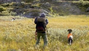 Lottery of small-game hunting in Jämtland